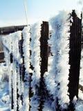 这里冬天 免版税图库摄影