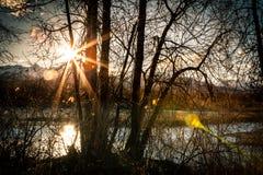 这里太阳来 库存图片