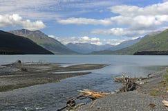 进入一个高山湖的冰河小河 免版税图库摄影
