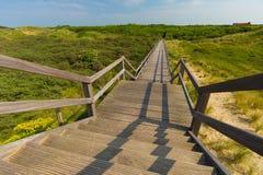 进入在沙丘和高草中的蓝天的木楼梯 免版税库存照片