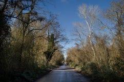 进入山口的柏油路风景通过树、村庄和森林地方 或者Aze农村地方  图库摄影
