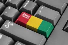 进入有几内亚旗子的按钮 免版税库存图片