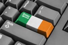 进入有爱尔兰旗子的按钮 免版税库存照片