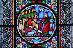 进入Noahs平底船的动物的污迹玻璃窗 免版税库存照片