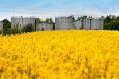 进展油菜籽的领域,谷粮仓后边 免版税库存照片