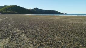 进来在海滩在海角希尔斯伯勒角国家公园,澳大利亚,移动式摄影车 影视素材