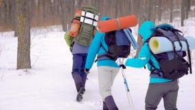 远征的四人 远足在困难的情况,人落入发生随风飘飞的雪 股票录像