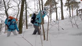 远征的四人 远足在困难的情况,人落入发生随风飘飞的雪 影视素材