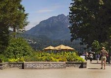 从远景点的风景看法在温哥华的史丹利公园 免版税库存照片
