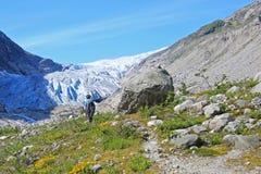 远足一个山的指南对Fabergstolsbreen,大Jostedalsbreen冰川,挪威,欧洲的冰川胳膊 免版税库存图片