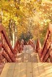 远足与木台阶的路在秋天森林里 免版税库存图片