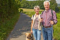 远足与狗的资深夫妇 免版税库存照片