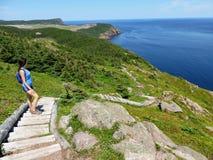 远足东海岸的美丽的景色落后在离海岸新的附近 免版税库存图片