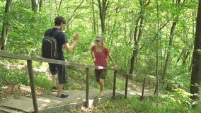 远足两个游人见面在台阶,去互相遇见,人在密林狂放的自然公园欢迎年轻女人 影视素材