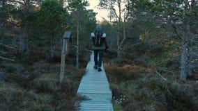远足人走艰难 男性旅游迁徙的走户外在一串足迹在夏天 美好的夏天日落 徒步旅行者 股票录像