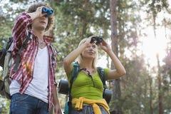 远足使用双筒望远镜的夫妇在森林里 库存照片