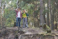 远足使用双筒望远镜的夫妇在森林里 免版税库存图片