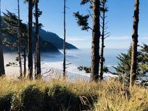 远足俄勒冈海岸 免版税图库摄影