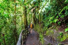 远足在哥斯达黎加 免版税库存照片