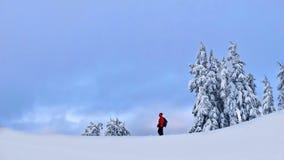 远足在山的雪靴在冬天 免版税图库摄影