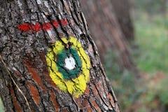 远足在木头的标记 免版税库存照片