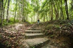 远足在森林,酸值Pha Ngan,泰国里的年轻男性背面图 免版税库存照片