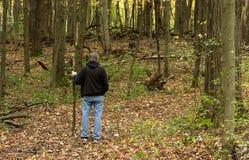 远足在森林 免版税库存照片
