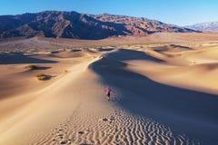 远足在沙漠 免版税库存图片
