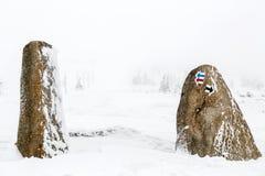 远足在石头的箭头标志在深雪,冬天富启示性的风景 免版税库存图片