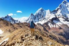 远足在秘鲁 库存照片