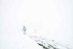 远足在阿尔卑斯的极端冬天 库存照片