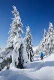 远足在雪的一个山森林里的冬天 免版税库存照片