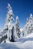 远足在雪的一个山森林里的冬天 库存照片