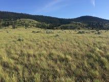 远足在风景美丽的坎卢普斯山 库存照片