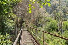 远足在鱼峡谷秋天足迹 免版税库存图片