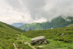 远足在绿色高山谷中的道路 免版税库存图片