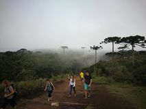 远足在Aparados国家公园做Serra 库存照片
