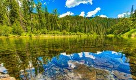 远足在Coeur d'阿莱内河旁边在爱达荷,一个寂静的反思的时候 免版税图库摄影
