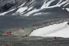 远足在Telefon海湾南极洲 免版税库存照片