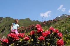 远足孩子在阿尔卑斯 免版税库存图片