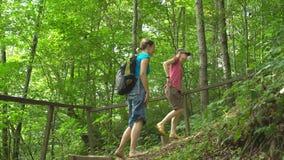 远足有背包攀登台阶的两年轻美女在山的密林狂放的自然公园 旅行旅游业 股票录像