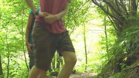 远足有背包攀登台阶的两年轻美女在山的密林狂放的自然公园 旅行旅游业 影视素材