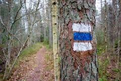 远足标记的路线 免版税库存图片