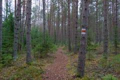 远足标记的路线 库存照片