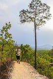 远足森林足迹佩带的背包的人 库存照片