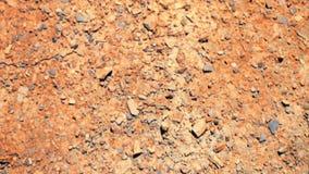 远足横跨破裂的沙漠风景 股票视频