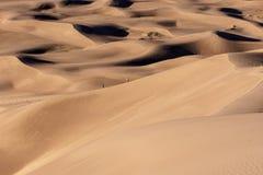 远足沙丘 免版税库存图片