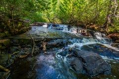 远足沿在睡觉巨型省公园安大略加拿大的一条小河 图库摄影