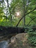 远足沿小河的日落 图库摄影