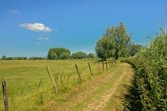 远足沿领域和草甸的道路在Kalkense Meersen自然保护的清楚的蓝天下,富兰德,比利时 免版税库存照片